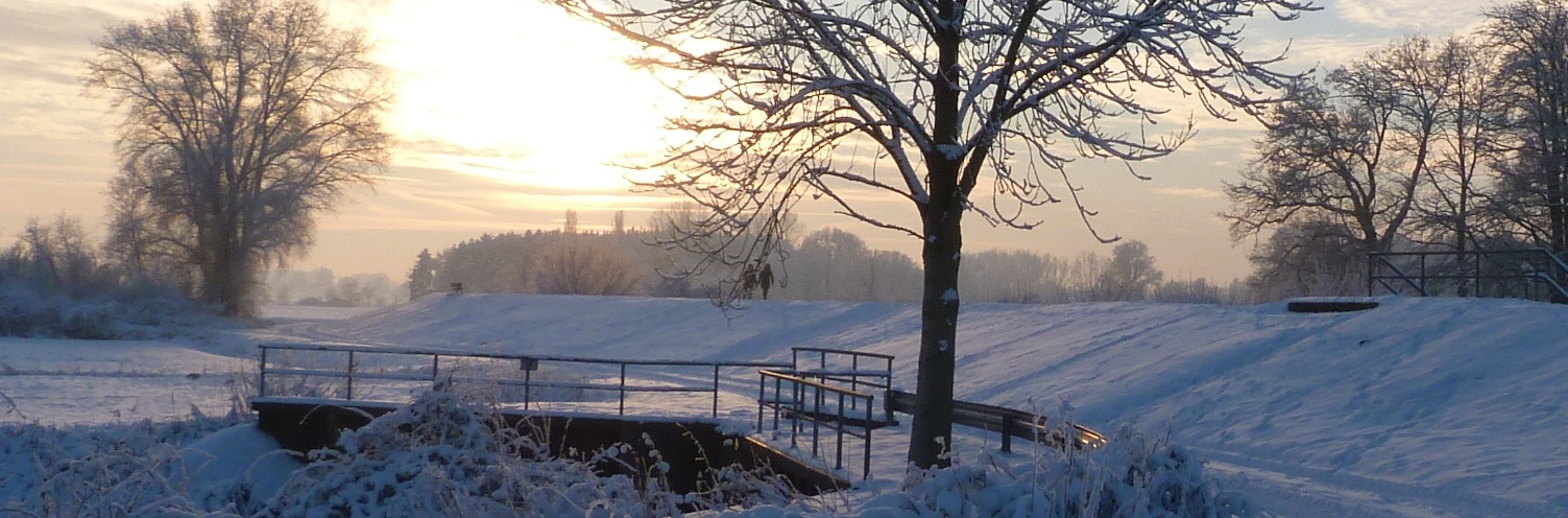 Winter am Deich
